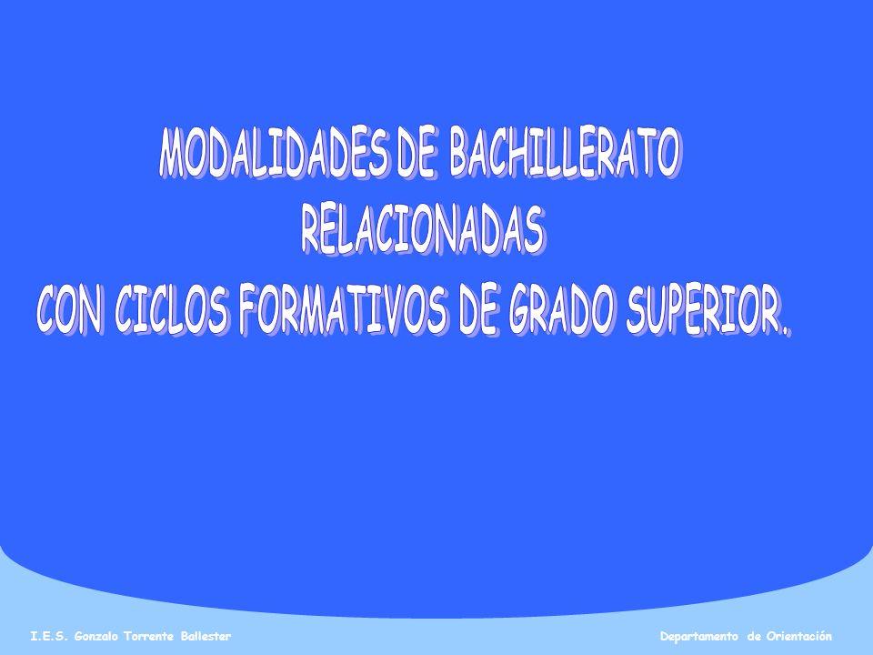 I.E.S. Gonzalo Torrente Ballester Departamento de Orientación