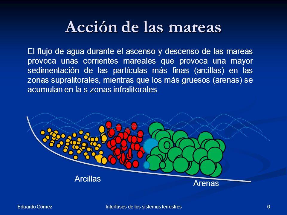 Acción de las corrientes litorales Eduardo Gómez 7Interfases de los sistemas terrestres Cuando existen corrientes paralelas a la costa, las olas chocan de forma oblicua.