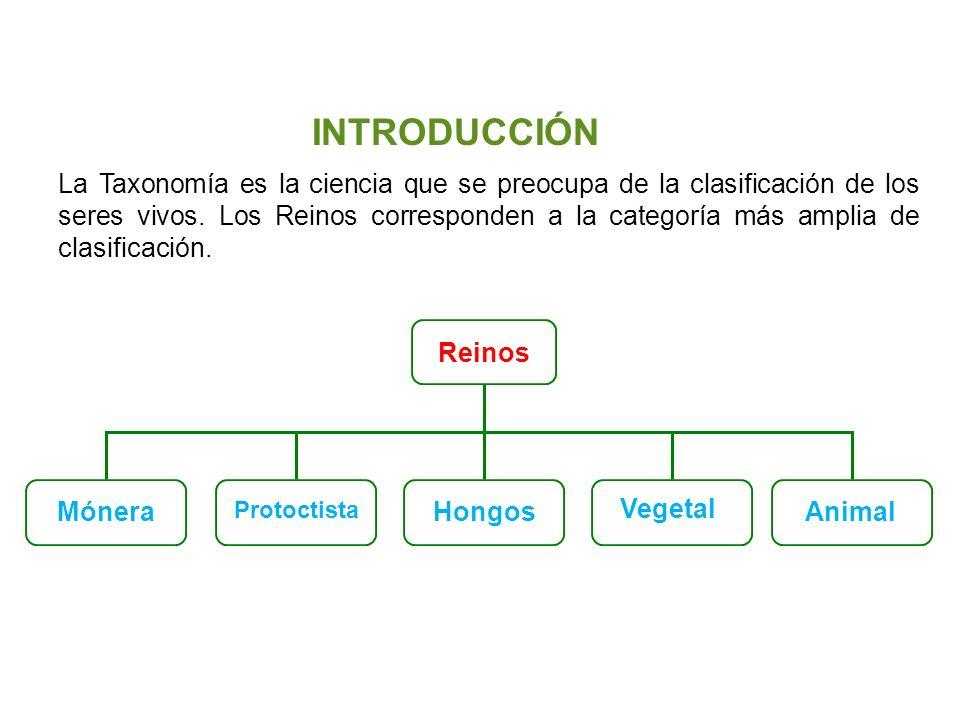 Unidad 5: Clasificación de los seres vivos Los cinco reinos Santillana La Taxonomía es la ciencia que se preocupa de la clasificación de los seres viv