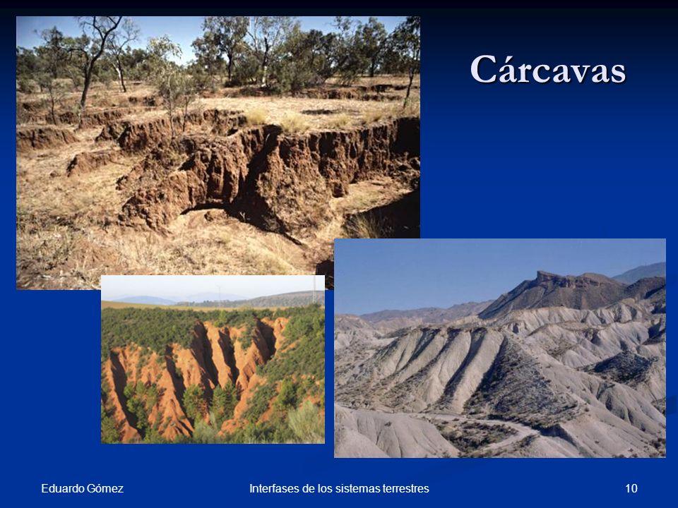 Cárcavas Eduardo Gómez 10Interfases de los sistemas terrestres