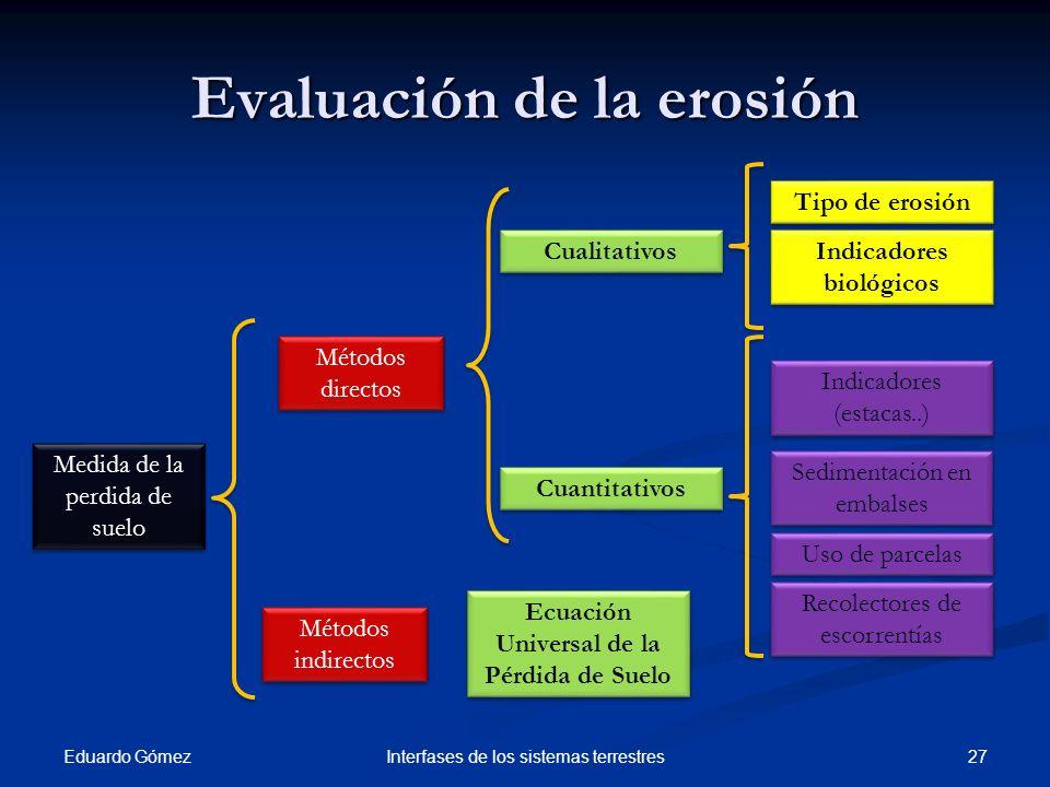 Evaluación de la erosión Eduardo Gómez 27Interfases de los sistemas terrestres Medida de la perdida de suelo Métodos directos Indicadores (estacas..)