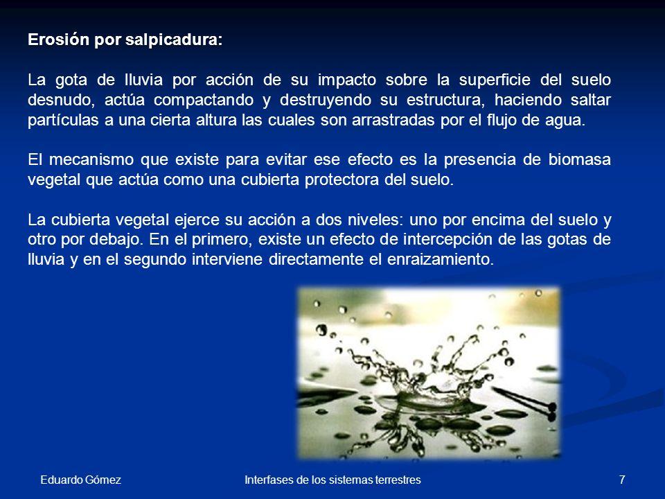 Eduardo Gómez 7Interfases de los sistemas terrestres Erosión por salpicadura: La gota de lluvia por acción de su impacto sobre la superficie del suelo