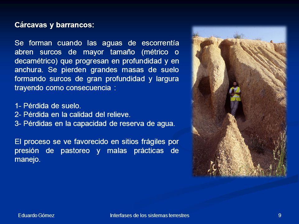 Eduardo Gómez 30Interfases de los sistemas terrestres Medida cuantitativa de la erosión 1.Estacas: Se clavan estacas con marcas en el suelo y se observa como la disminución del nivel del suelo.