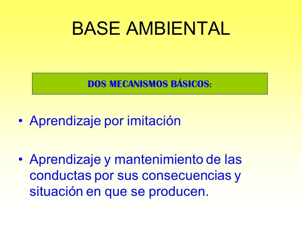 BASE AMBIENTAL Aprendizaje por imitación Aprendizaje y mantenimiento de las conductas por sus consecuencias y situación en que se producen. DOS MECANI