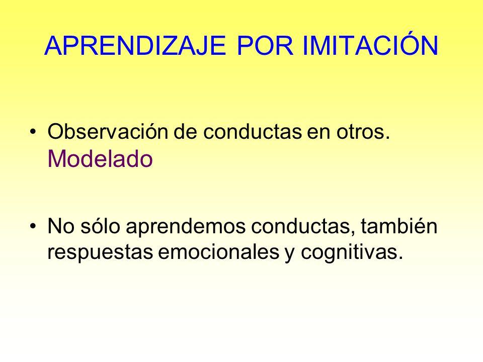 APRENDIZAJE POR IMITACIÓN Observación de conductas en otros. Modelado No sólo aprendemos conductas, también respuestas emocionales y cognitivas.