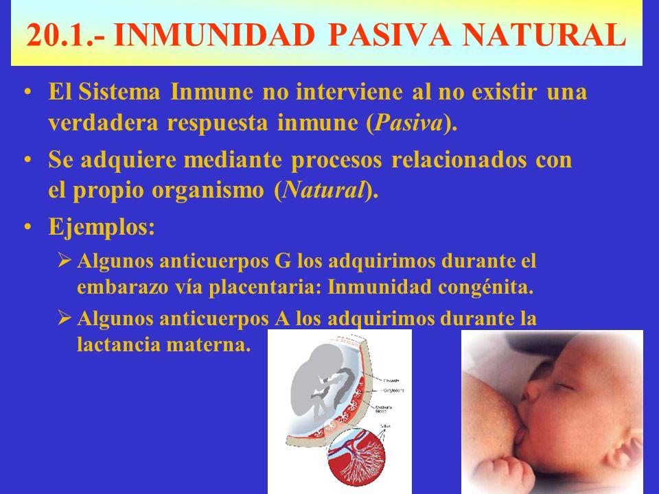 20.1.- INMUNIDAD PASIVA NATURAL El Sistema Inmune no interviene al no existir una verdadera respuesta inmune (Pasiva).