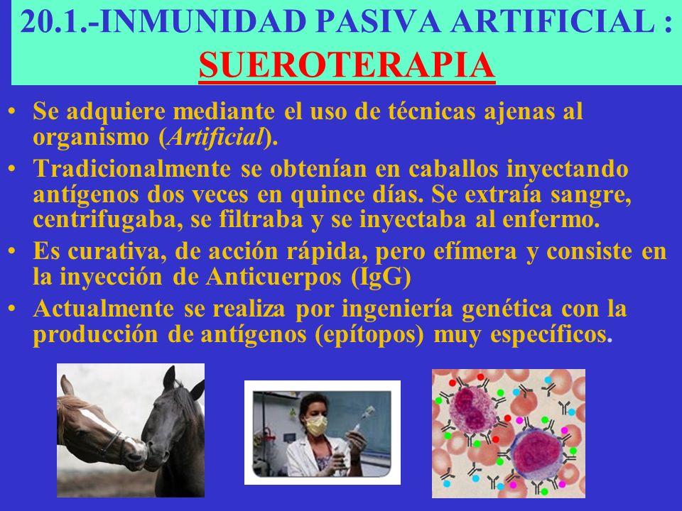 20.1.-INMUNIDAD PASIVA ARTIFICIAL : SUEROTERAPIA Se adquiere mediante el uso de técnicas ajenas al organismo (Artificial).