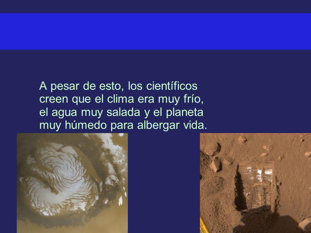 A pesar de esto, los científicos creen que el clima era muy frío, el agua muy salada y el planeta muy húmedo para albergar vida.