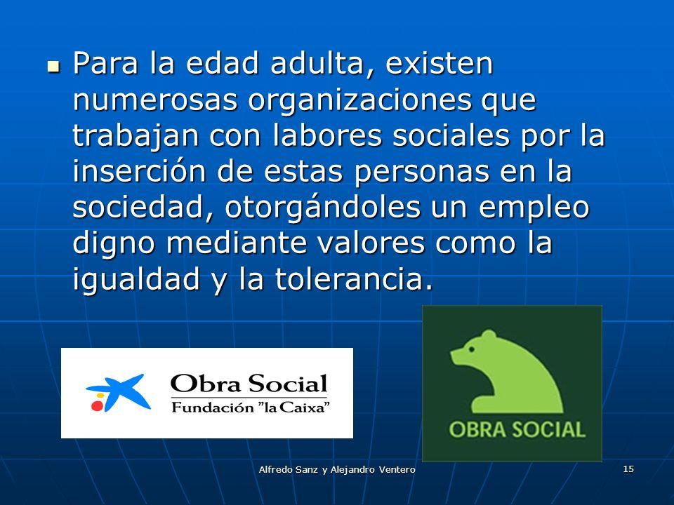 Alfredo Sanz y Alejandro Ventero 15 Para la edad adulta, existen numerosas organizaciones que trabajan con labores sociales por la inserción de estas