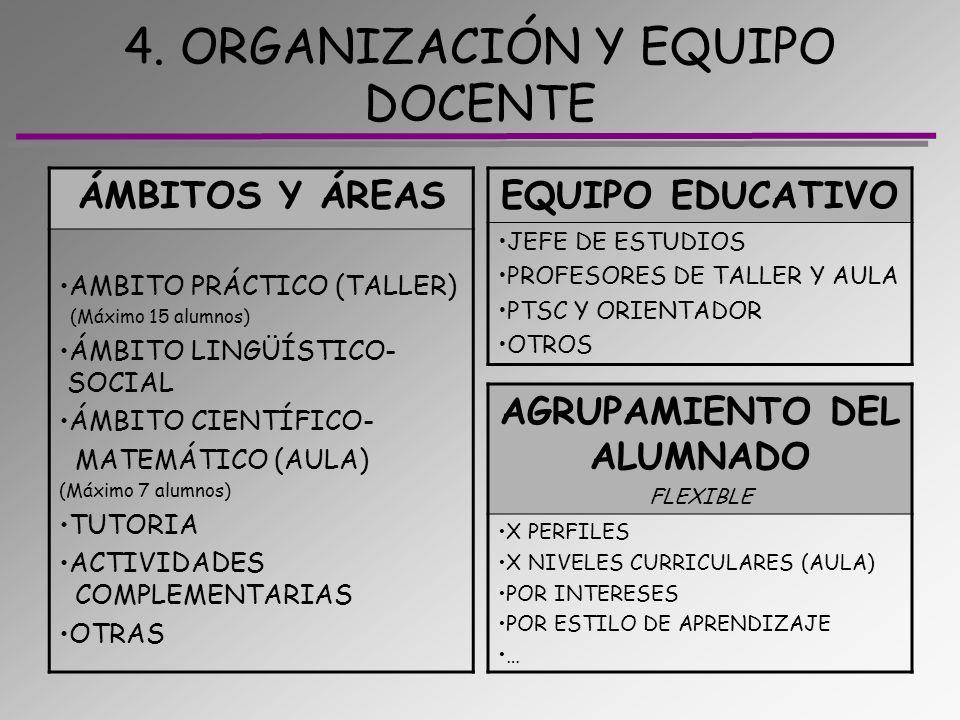4. ORGANIZACIÓN Y EQUIPO DOCENTE ÁMBITOS Y ÁREAS AMBITO PRÁCTICO (TALLER) (Máximo 15 alumnos) ÁMBITO LINGÜÍSTICO- SOCIAL ÁMBITO CIENTÍFICO- MATEMÁTICO