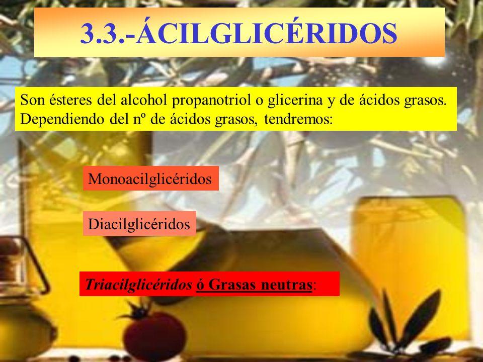 3.3.-ÁCILGLICÉRIDOS Monoacilglicéridos Son ésteres del alcohol propanotriol o glicerina y de ácidos grasos. Dependiendo del nº de ácidos grasos, tendr