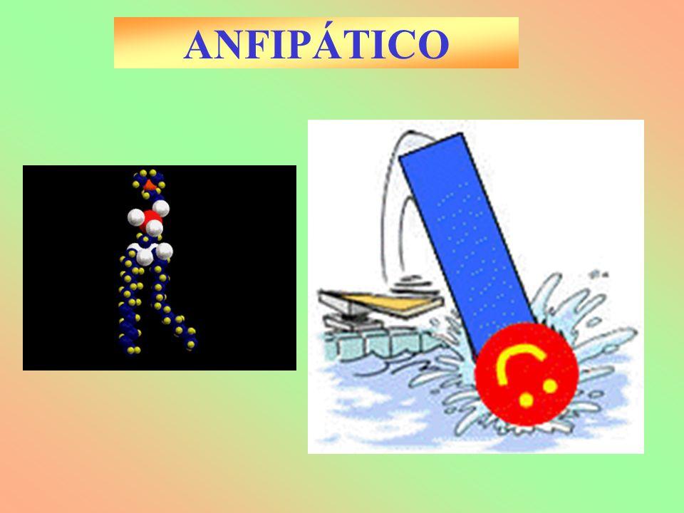 ANFIPÁTICO