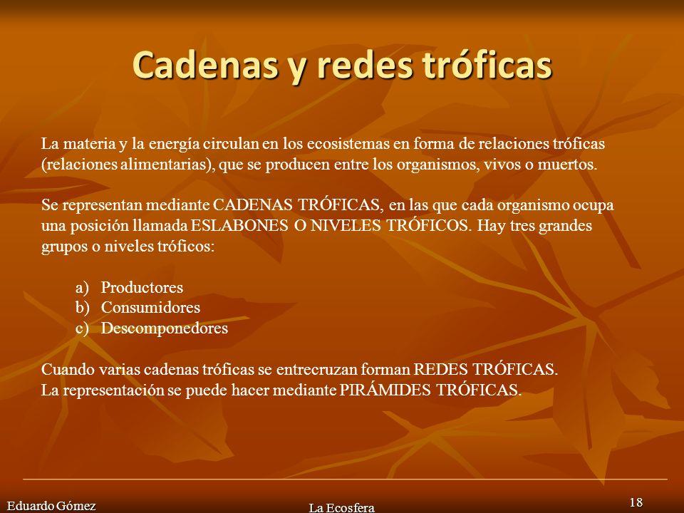 Cadenas y redes tróficas Eduardo Gómez La Ecosfera 18 La materia y la energía circulan en los ecosistemas en forma de relaciones tróficas (relaciones