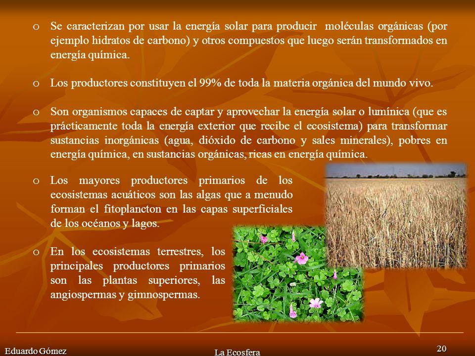 Eduardo Gómez La Ecosfera 20 o Se caracterizan por usar la energía solar para producir moléculas orgánicas (por ejemplo hidratos de carbono) y otros c