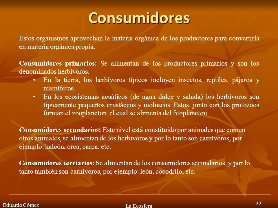 Consumidores Eduardo Gómez La Ecosfera 22 Estos organismos aprovechan la materia orgánica de los productores para convertirla en materia orgánica prop