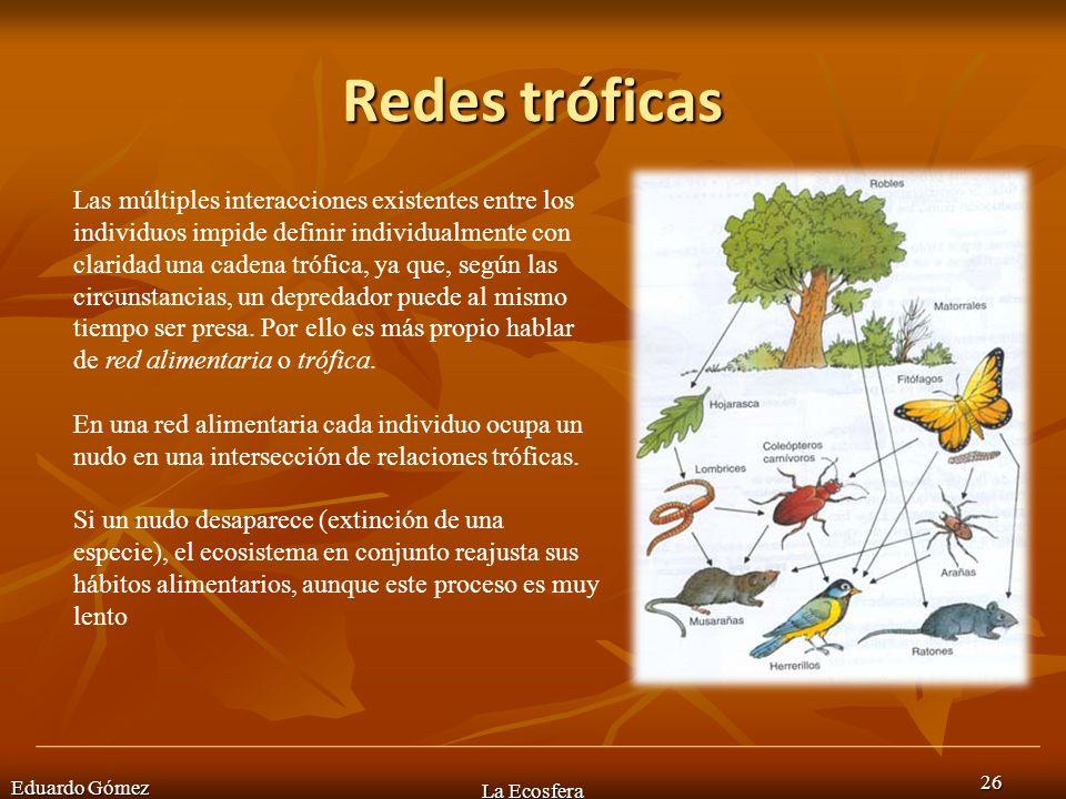 Redes tróficas Eduardo Gómez La Ecosfera 26 Las múltiples interacciones existentes entre los individuos impide definir individualmente con claridad un