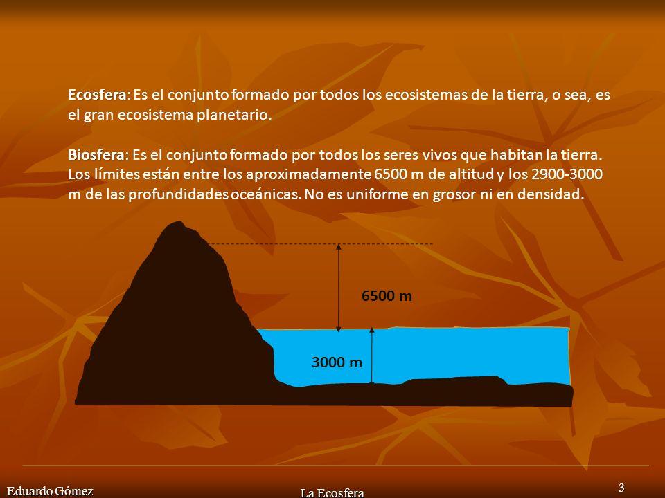 Eduardo Gómez La Ecosfera 4 La biosfera es un término que también se refiere al conjunto de todos los seres vivos que habitan la tierra y se puede considerar un sistema: 1.Dinámico 2.Abierto 3.Discontinuo 4.Interactivo con los otros sistemas terrestres (hidrosfera, atmósfera, geosfera)