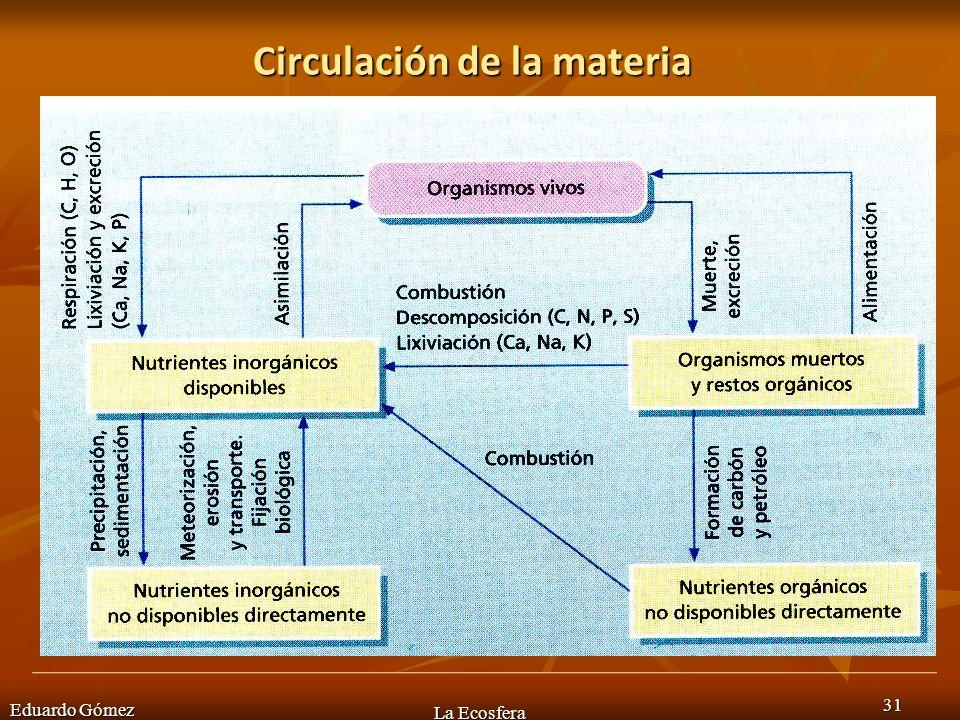 Circulación de la materia Eduardo Gómez La Ecosfera 31