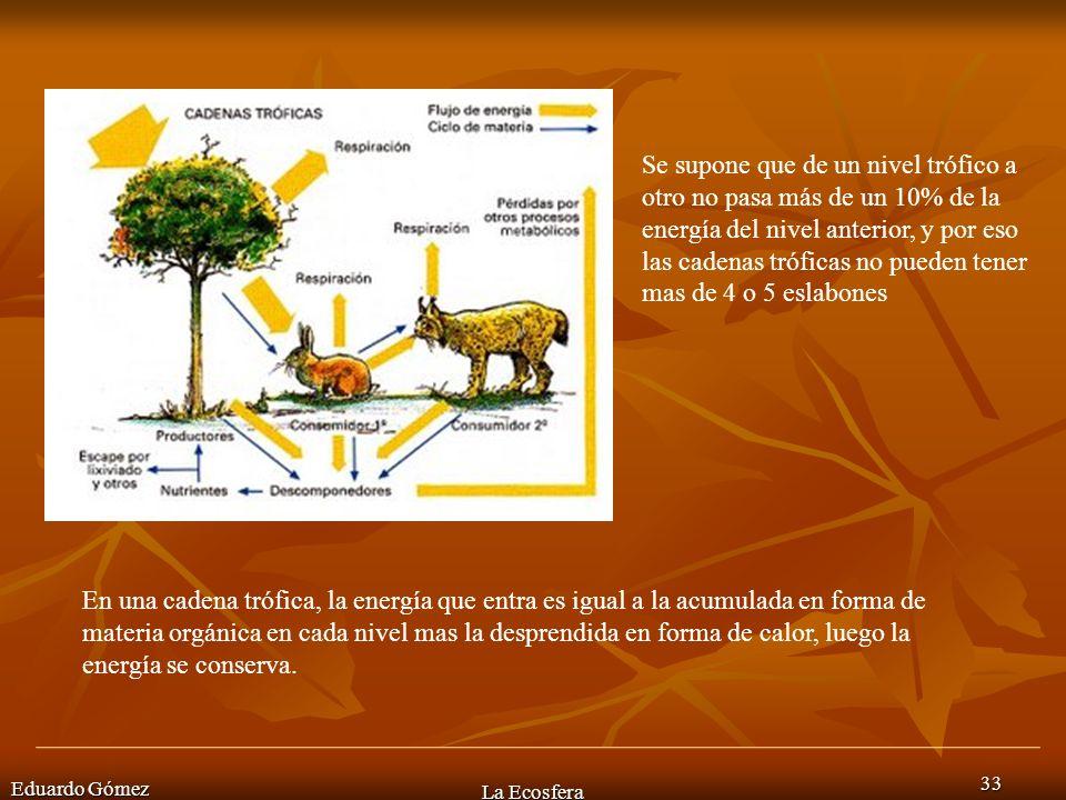 Eduardo Gómez La Ecosfera 33 Se supone que de un nivel trófico a otro no pasa más de un 10% de la energía del nivel anterior, y por eso las cadenas tr