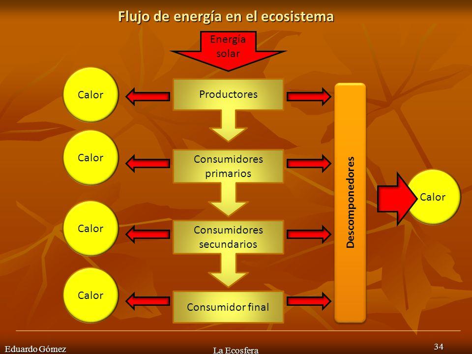 Flujo de energía en el ecosistema Eduardo Gómez La Ecosfera 34 Productores Consumidores primarios Consumidores secundarios Consumidor final Descompone
