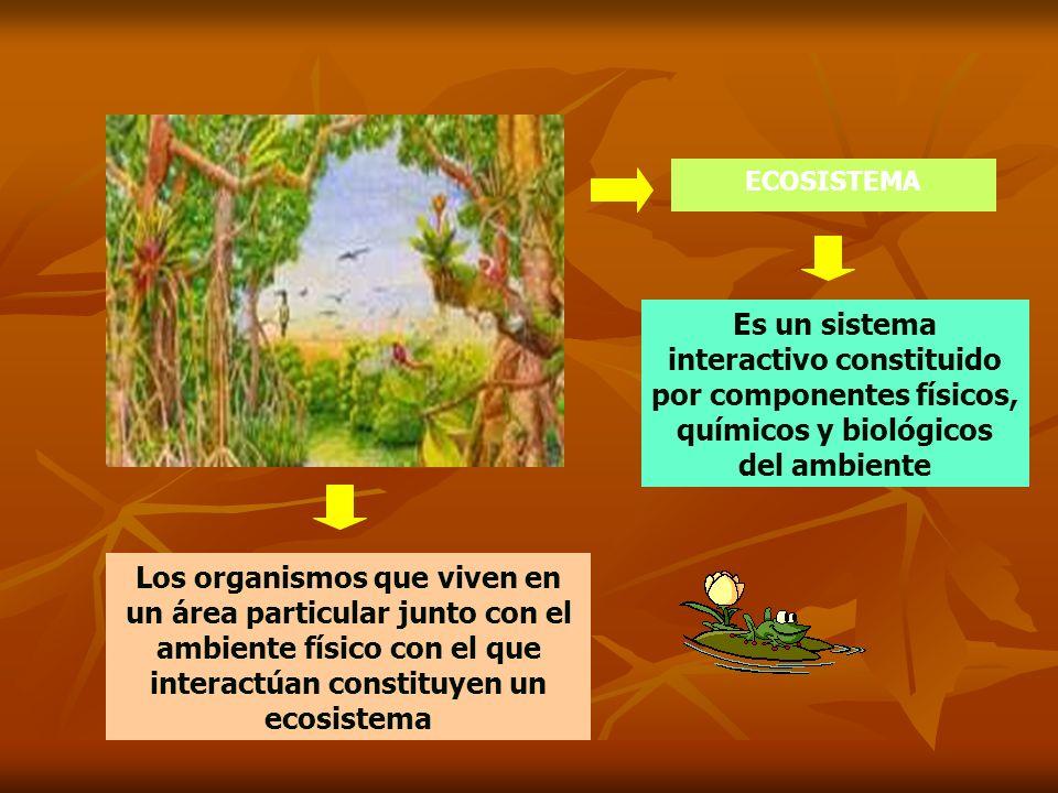 ECOSISTEMA Es un sistema interactivo constituido por componentes físicos, químicos y biológicos del ambiente Los organismos que viven en un área parti