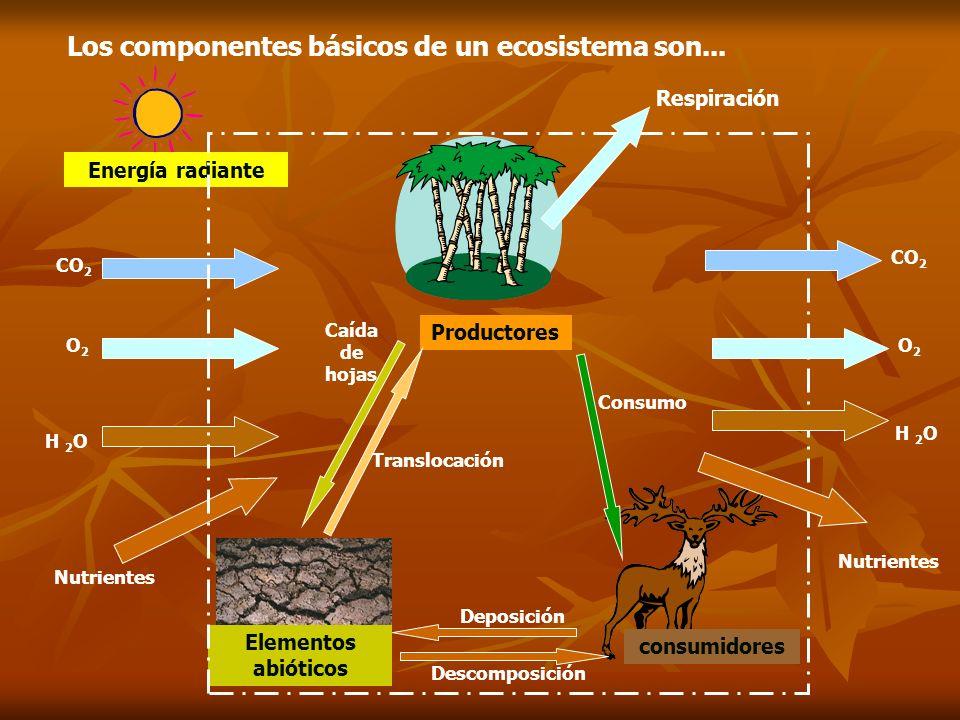 Cadenas y redes tróficas Eduardo Gómez La Ecosfera 18 La materia y la energía circulan en los ecosistemas en forma de relaciones tróficas (relaciones alimentarias), que se producen entre los organismos, vivos o muertos.