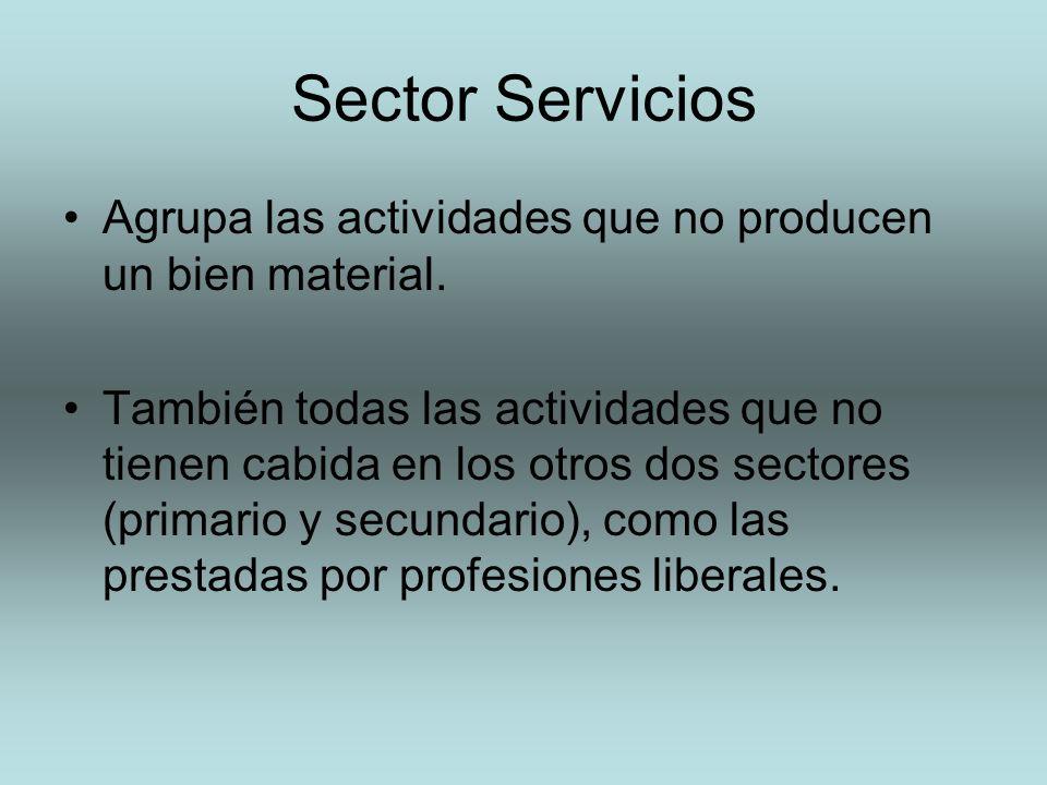Sector Servicios Agrupa las actividades que no producen un bien material. También todas las actividades que no tienen cabida en los otros dos sectores