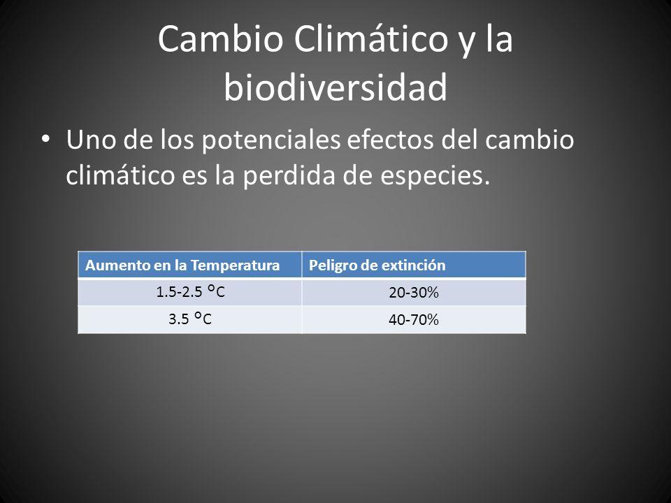 Cambio Climático y la biodiversidad Uno de los potenciales efectos del cambio climático es la perdida de especies. Aumento en la TemperaturaPeligro de