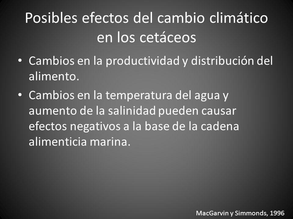 Posibles efectos del cambio climático en los cetáceos Cambios en la productividad y distribución del alimento. Cambios en la temperatura del agua y au