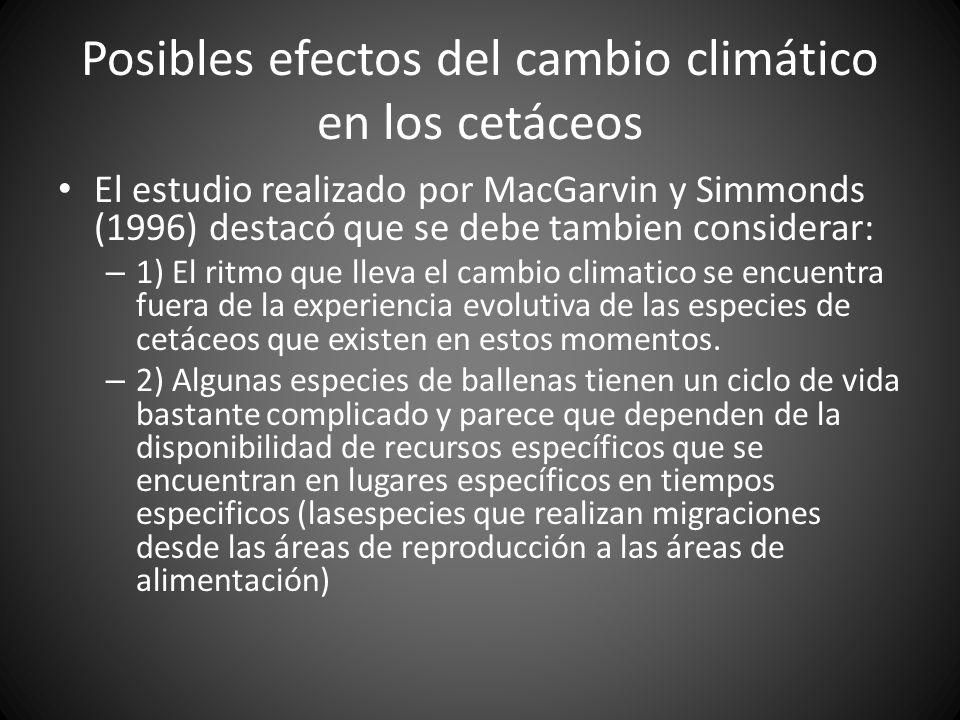 Posibles efectos del cambio climático en los cetáceos El estudio realizado por MacGarvin y Simmonds (1996) destacó que se debe tambien considerar: – 1