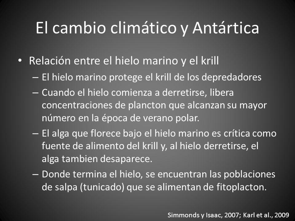 El cambio climático y Antártica Relación entre el hielo marino y el krill – El hielo marino protege el krill de los depredadores – Cuando el hielo com
