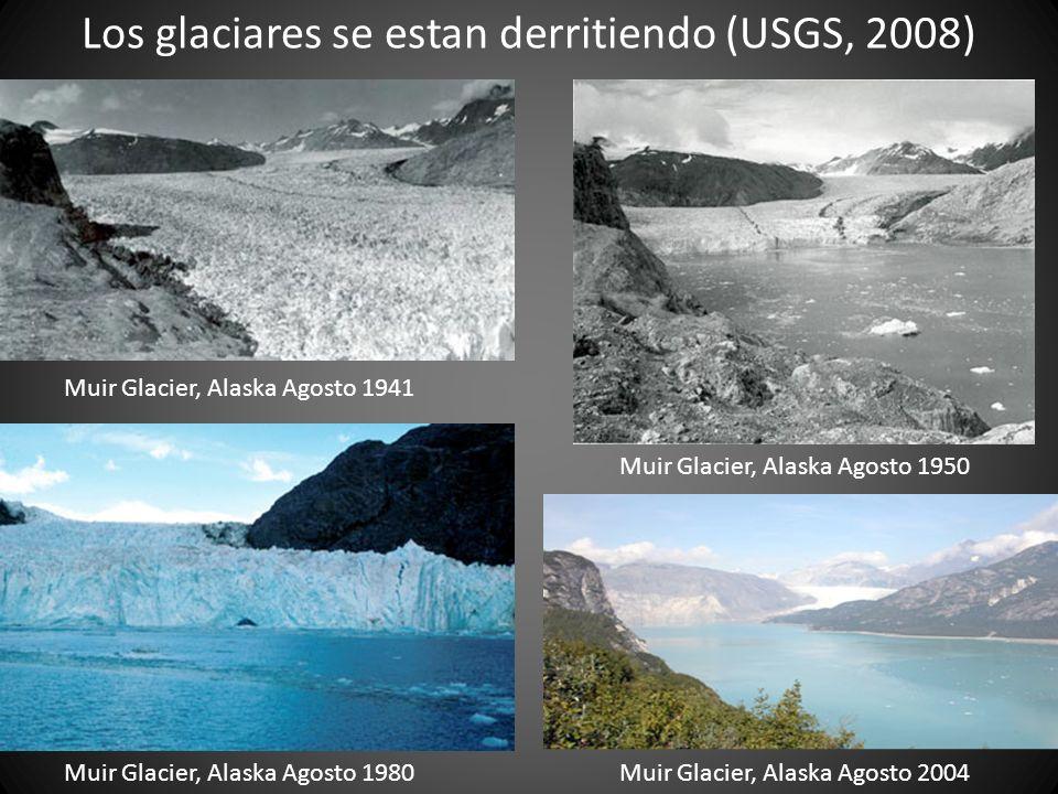 Los glaciares se estan derritiendo (USGS, 2008) Muir Glacier, Alaska Agosto 1941 Muir Glacier, Alaska Agosto 1950 Muir Glacier, Alaska Agosto 1980 Mui