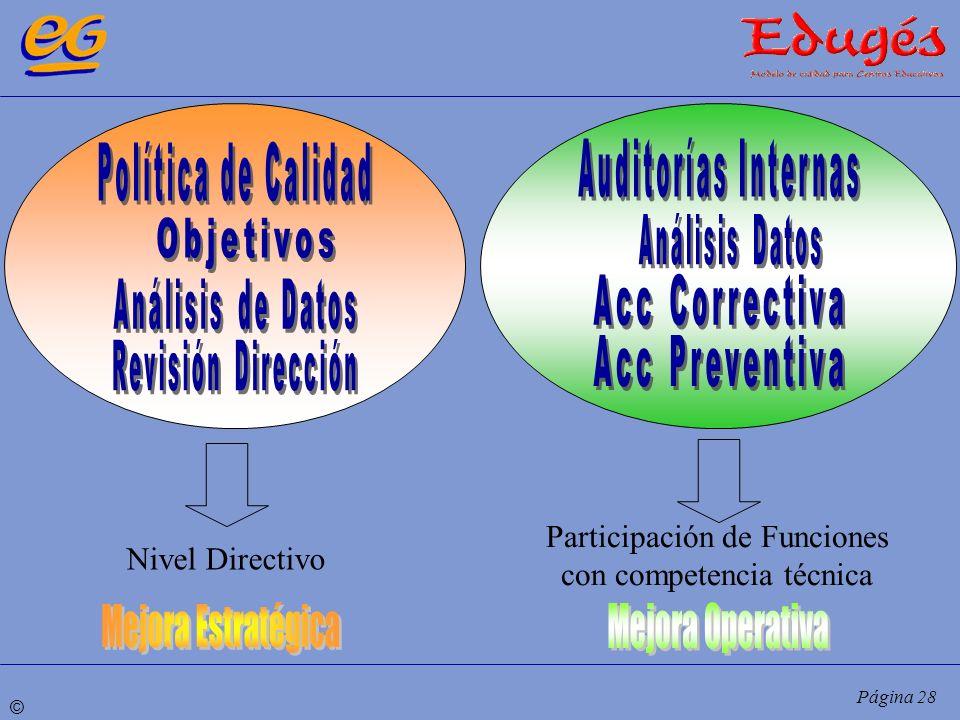 © Página 28 Nivel Directivo Participación de Funciones con competencia técnica
