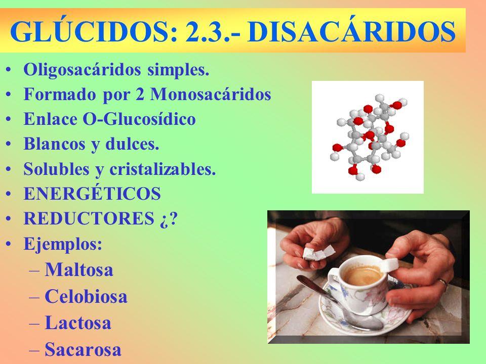 GLÚCIDOS: 2.3.- DISACÁRIDOS Oligosacáridos simples. Formado por 2 Monosacáridos Enlace O-Glucosídico Blancos y dulces. Solubles y cristalizables. ENER