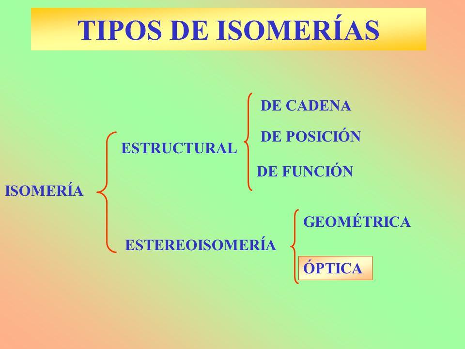 TIPOS DE ISOMERÍAS ESTEREOISOMERÍA GEOMÉTRICA DE POSICIÓN ÓPTICA DE CADENA DE FUNCIÓN ESTRUCTURAL ISOMERÍA