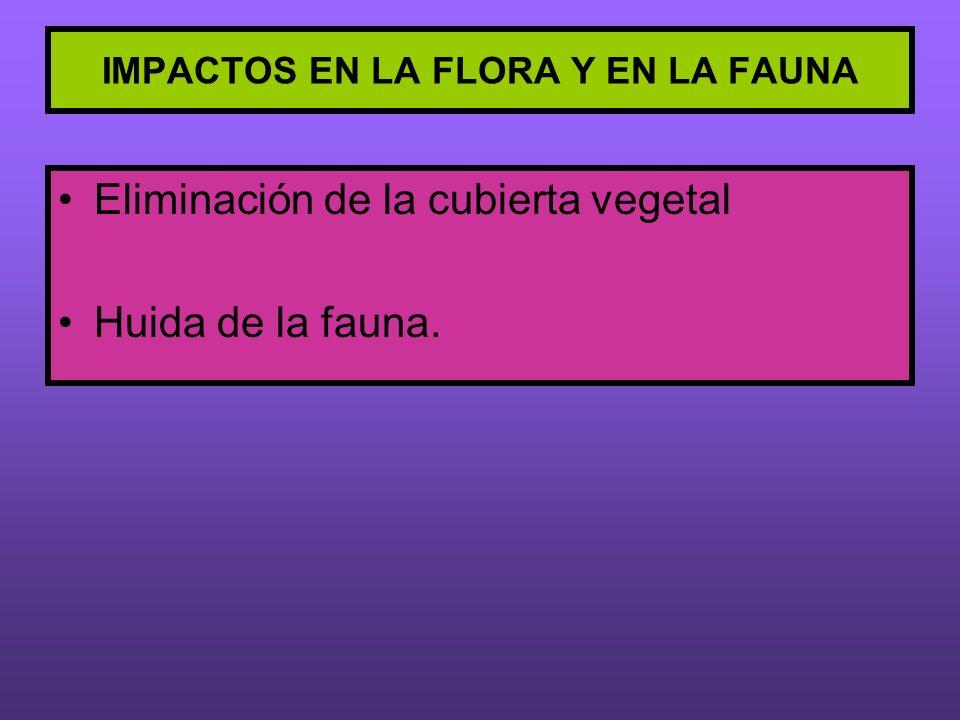IMPACTOS EN LA FLORA Y EN LA FAUNA Eliminación de la cubierta vegetal Huida de la fauna.