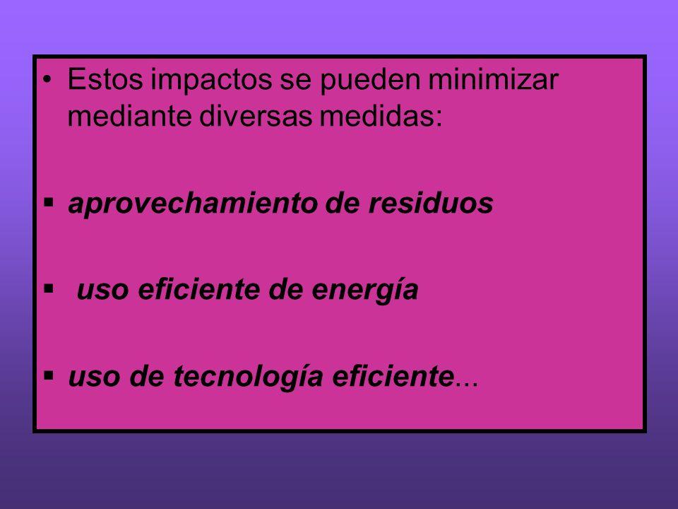 Estos impactos se pueden minimizar mediante diversas medidas: aprovechamiento de residuos uso eficiente de energía uso de tecnología eficiente...