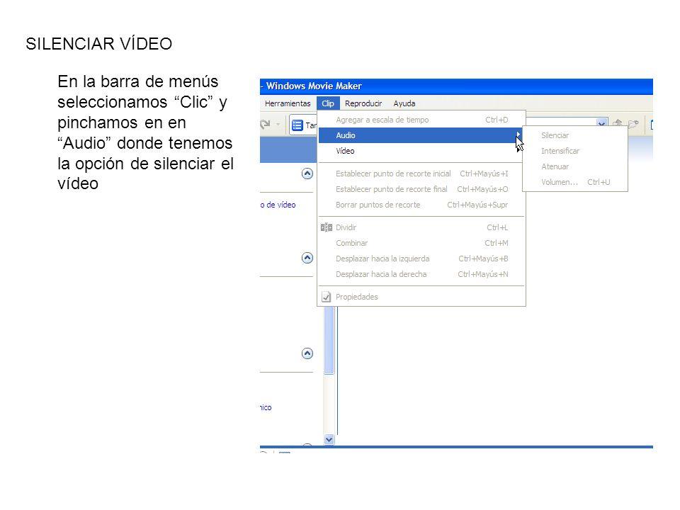En la barra de menús seleccionamos Clic y pinchamos en en Audio donde tenemos la opción de silenciar el vídeo SILENCIAR VÍDEO