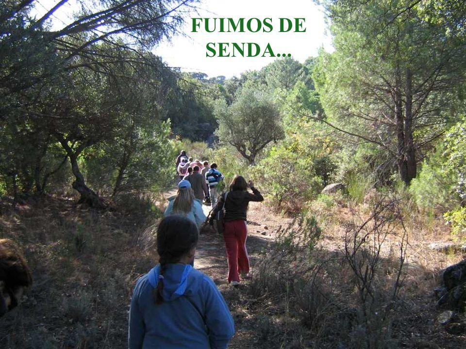 FUIMOS DE SENDA...