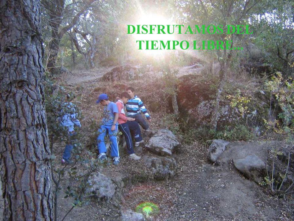 DISFRUTAMOS DEL TIEMPO LIBRE...