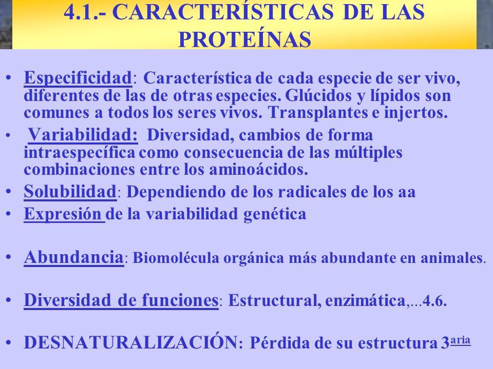 Especificidad: Característica de cada especie de ser vivo, diferentes de las de otras especies. Glúcidos y lípidos son comunes a todos los seres vivos