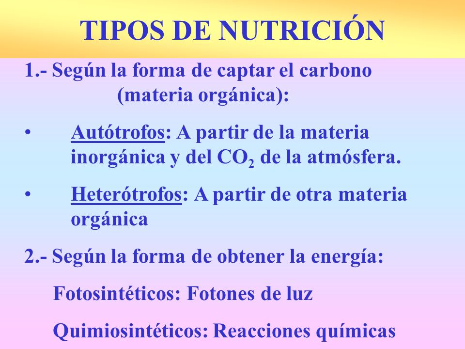 1.- Según la forma de captar el carbono (materia orgánica): Autótrofos: A partir de la materia inorgánica y del CO 2 de la atmósfera. Heterótrofos: A
