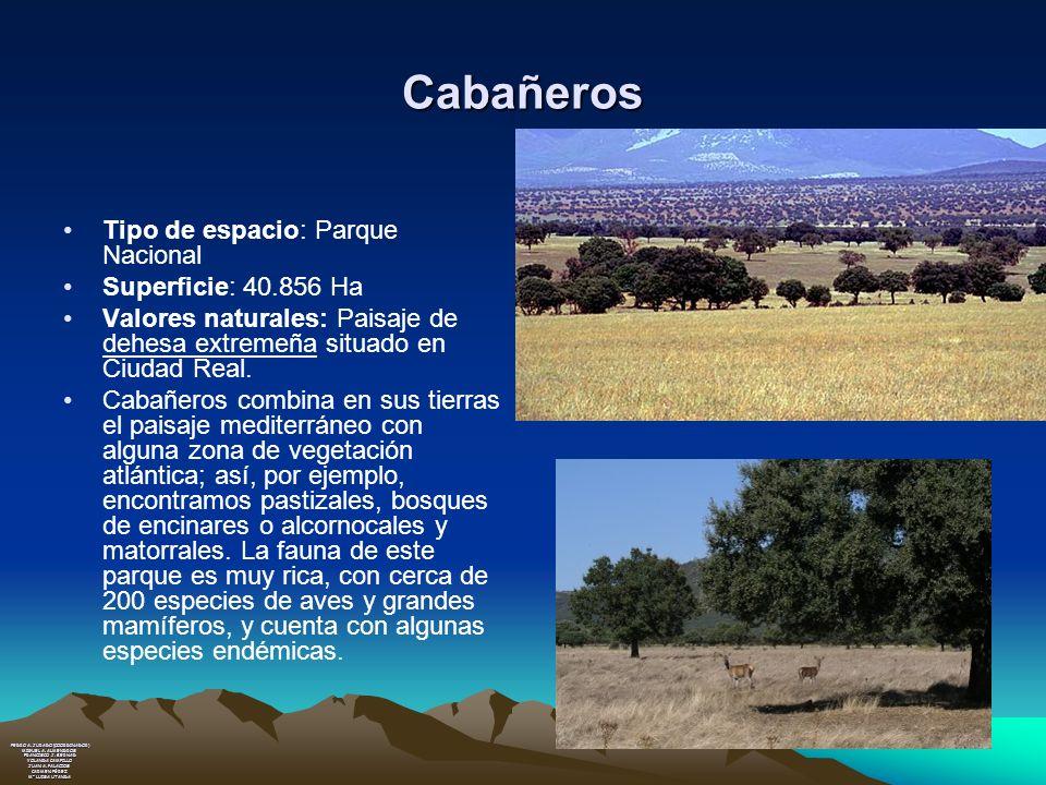 Cabañeros Tipo de espacio: Parque Nacional Superficie: 40.856 Ha Valores naturales: Paisaje de dehesa extremeña situado en Ciudad Real. Cabañeros comb