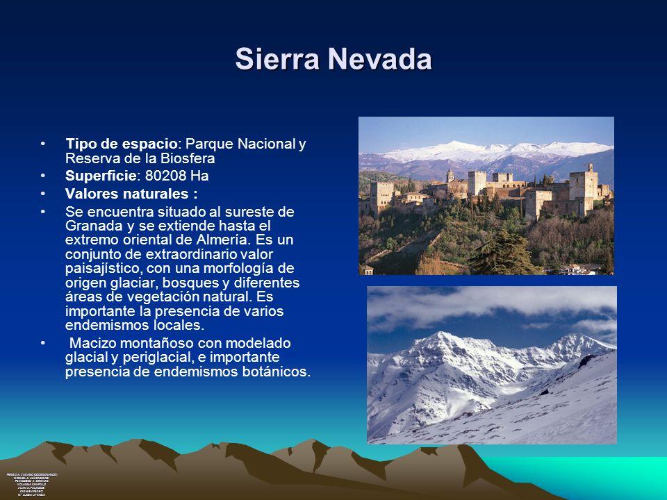 Sierra Nevada Tipo de espacio: Parque Nacional y Reserva de la Biosfera Superficie: 80208 Ha Valores naturales : Se encuentra situado al sureste de Gr