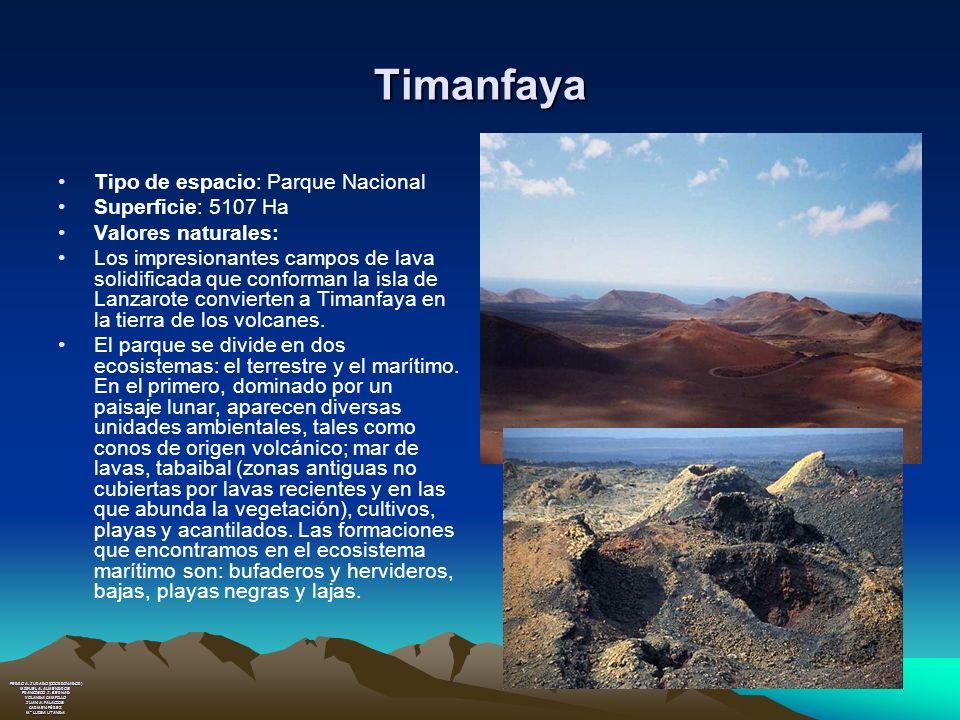 Timanfaya Tipo de espacio: Parque Nacional Superficie: 5107 Ha Valores naturales: Los impresionantes campos de lava solidificada que conforman la isla
