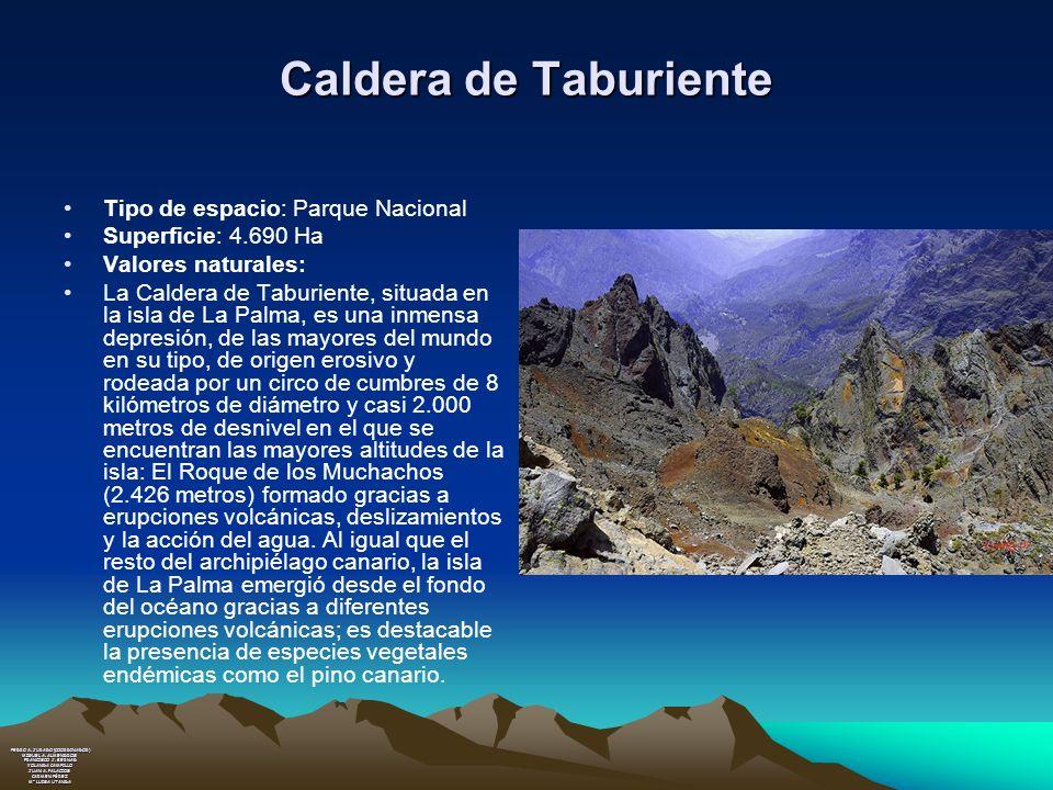 Caldera de Taburiente Tipo de espacio: Parque Nacional Superficie: 4.690 Ha Valores naturales: La Caldera de Taburiente, situada en la isla de La Palm