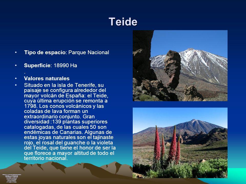 Teide Tipo de espacio: Parque Nacional Superficie: 18990 Ha. Valores naturales Situado en la isla de Tenerife, su paisaje se configura alrededor del m
