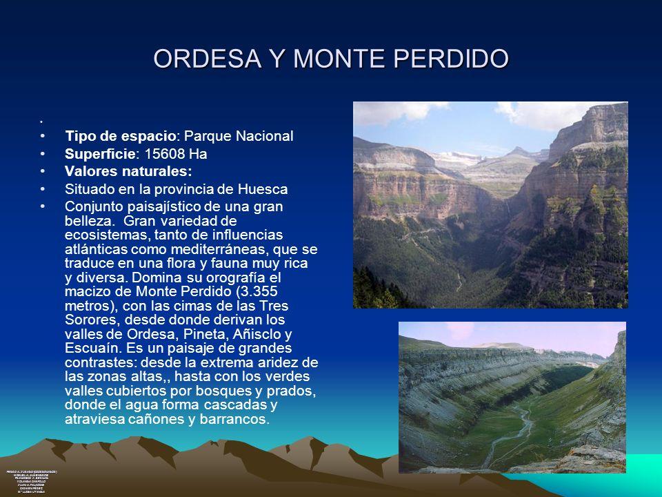ORDESA Y MONTE PERDIDO Tipo de espacio: Parque Nacional Superficie: 15608 Ha Valores naturales: Situado en la provincia de Huesca Conjunto paisajístic