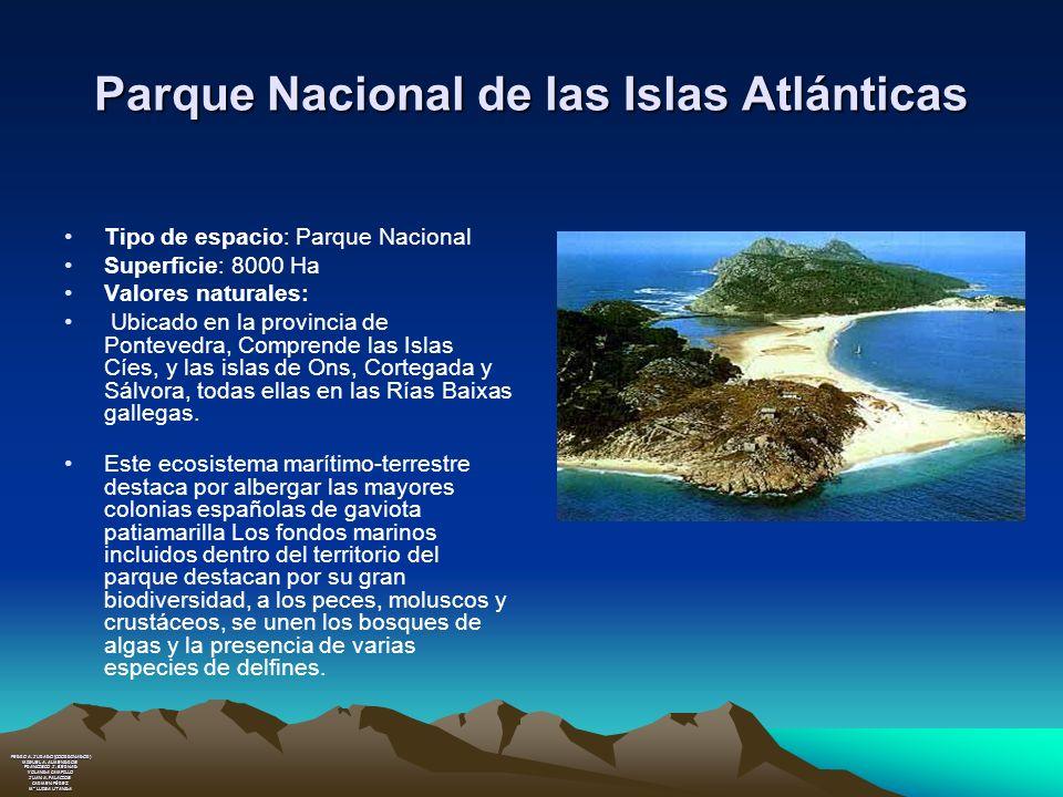 Parque Nacional de las Islas Atlánticas Tipo de espacio: Parque Nacional Superficie: 8000 Ha Valores naturales: Ubicado en la provincia de Pontevedra,