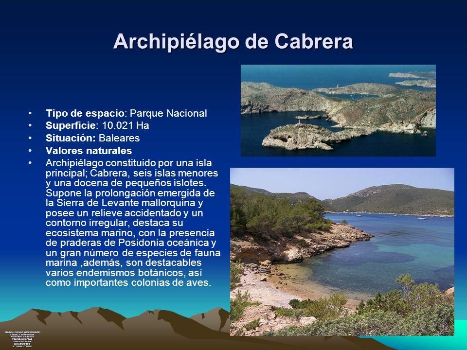 Archipiélago de Cabrera Tipo de espacio: Parque Nacional Superficie: 10.021 Ha Situación: Baleares Valores naturales Archipiélago constituido por una